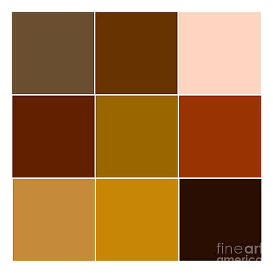 Infographic Mixed Media - Squares - Brown by Celestial Images