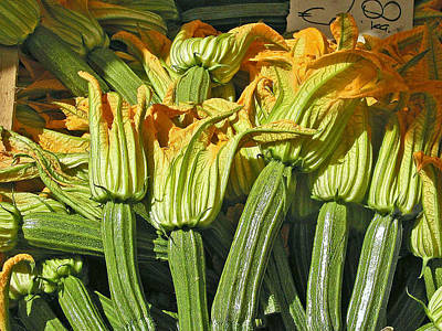 Squash Blossoms Art Print by Jean Hall