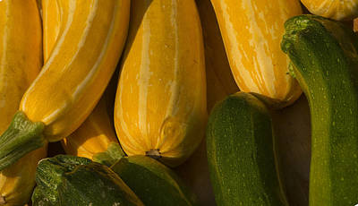Photograph - Squash by Philip Rispin