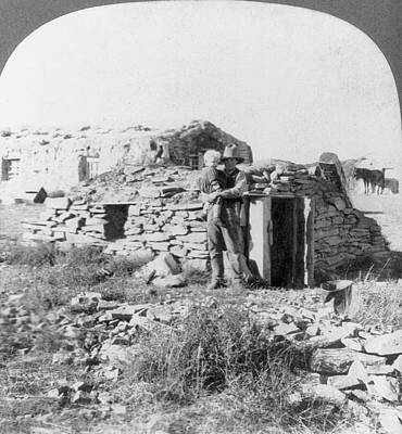 Dakota Painting - Squatter Shelter, 1905 by Granger