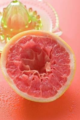 Squeezed Pink Grapefruit In Front Of Citrus Squeezer Art Print