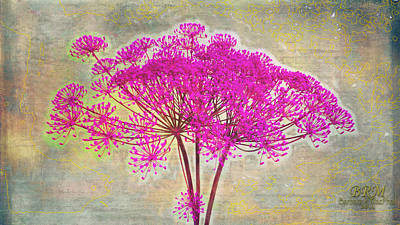 Squiggle Fun Pinked Art Print by Barbara R MacPhail