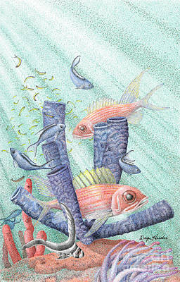 Drawing - Squirrel Fish Reef by Wayne Hardee