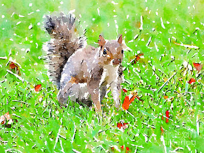 Photograph - Squirrel In Leaves - Watercolor by Kerri Farley