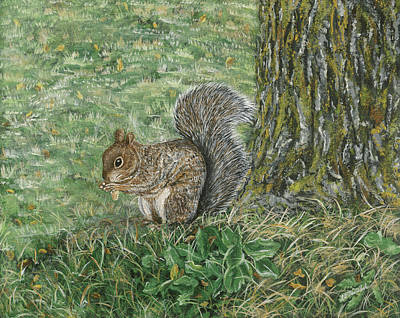 Painting - Squirrel by Lucinda V VanVleck
