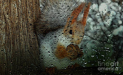 Squirrel Mixed Media - Squirrel by Marvin Blaine