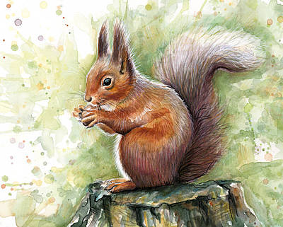 Green Mixed Media - Squirrel Watercolor Art by Olga Shvartsur
