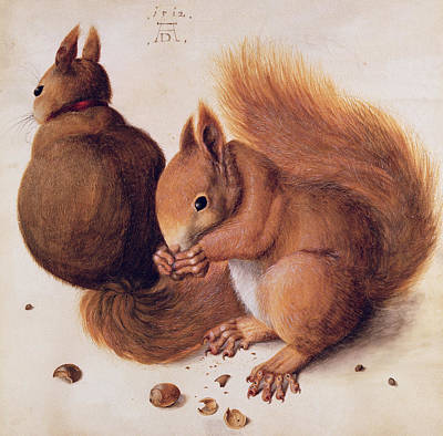Squirrels Art Print by Albrecht Duerer