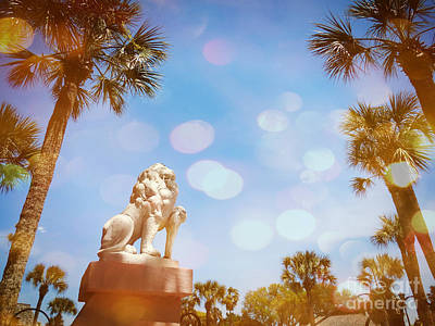 Photograph - St Augustine Lion by Valerie Reeves