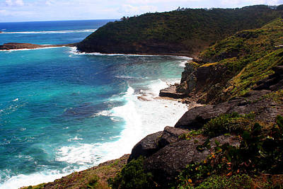 Photograph - St. Barths Beauty by Kathryn McBride