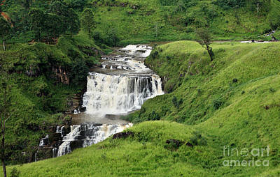 Photograph - St Clair's Falls In Sri Lanka by Paul Cowan