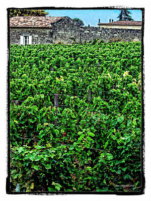 Photograph - St. Emilion Winery by Joan  Minchak