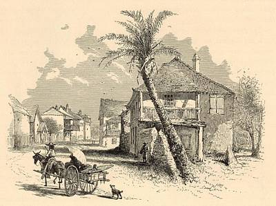 Horse And Buggy Drawing - St. Francis Street In St. Augustine 1872 Engraving by Antique Engravings