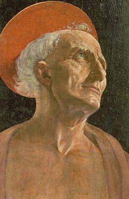 Jerome Painting - St. Jerome by Antonio Pollaiuolo