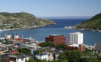 Photograph - St Johns  Newfoundland by Liz Leyden