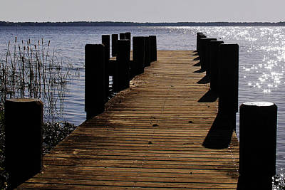 Augustine Photograph - St Johns River Florida - A Chain Of Lakes by Christine Till