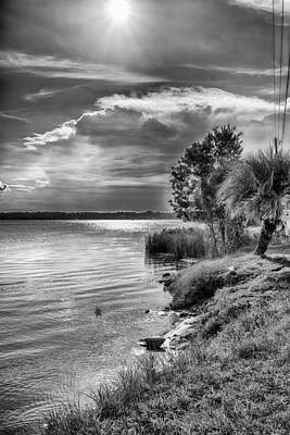 Photograph - St. Johns River by Howard Salmon