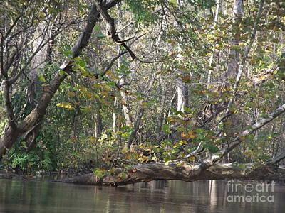 Photograph - St Joseph River  by Deborah DeLaBarre