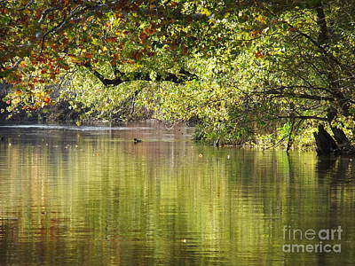 Photograph - St Joseph River Leo Indiana by Deborah DeLaBarre