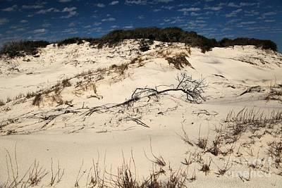 St. Joseph Sand Dunes Art Print by Adam Jewell