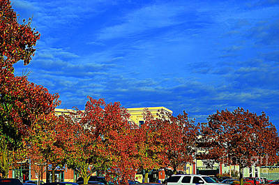Photograph - St. Louis -  Blue Sky In Autumn - Luther  Fine Art   by Luther Fine Art