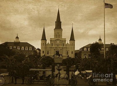 Animals Royalty-Free and Rights-Managed Images - St Louis Cathedral - New Orleans  by Andrea Anderegg
