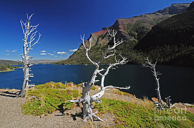 Photograph - St. Mary Lake - Glacier Np by Cindy Murphy - NightVisions