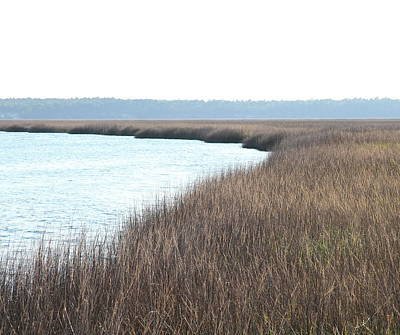 Georgia Photograph - St. Mary's Marsh by Cathy Lindsey