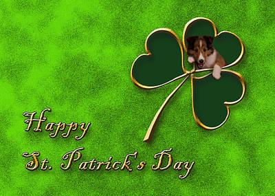Mixed Media Of Dogs Digital Art - St. Patrick's Day Clover Sheltie Puppy by Jeanette K