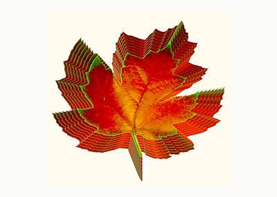 Stacked Maple Leaf  Art Print by Susan Elizabeth Dalton