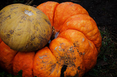 Photograph - Stacked Pumpkins by Jim Shackett