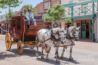 Sheep - Stagecoach Ride 3 by Al Andersen