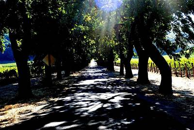 Photograph - Stags Leap Winery Napa Ca by Ron Bartels