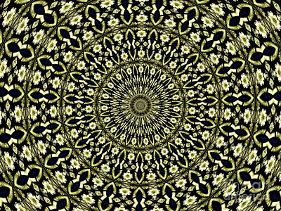 Photograph - Stained Glass Kaleidoscope 02 by Rose Santuci-Sofranko