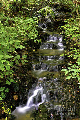 Photograph - Stair Step Falls Two by Ken Frischkorn