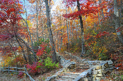 Photograph - Staircase To Fall by Lynn Bauer