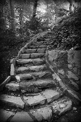Photograph - Stairs In A Garden by Kelly Hazel