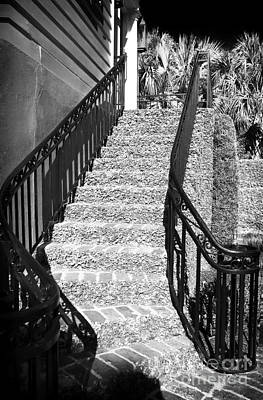 Photograph - Stairs Of Ivy by John Rizzuto