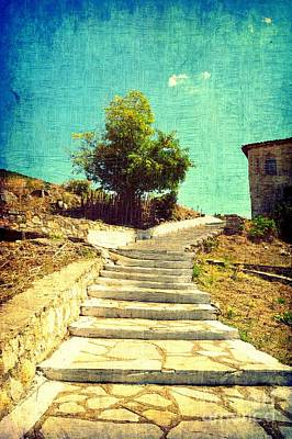 Photograph - Stairs To A Tree by Ioanna Papanikolaou