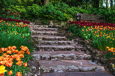 Crazing Photograph - Stairs With Tulips. Keukenhof Garden. Netherlands by Jenny Rainbow
