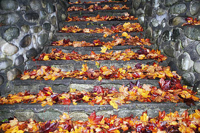 Photograph - Stairway To Autumn  by Bill Thomson