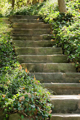 Stairway To Heaven Art Print by Elin Mastrangelo