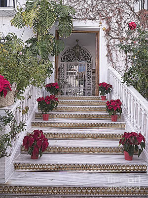 Photograph - Stairway To Spanish House by Brenda Kean