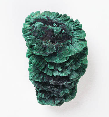 Malachite Photograph - Stalactitic Habit Of Malachite by Dorling Kindersley/uig