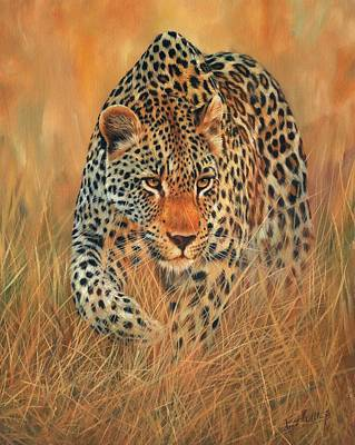 Stalking Painting - Stalking Leopard by David Stribbling