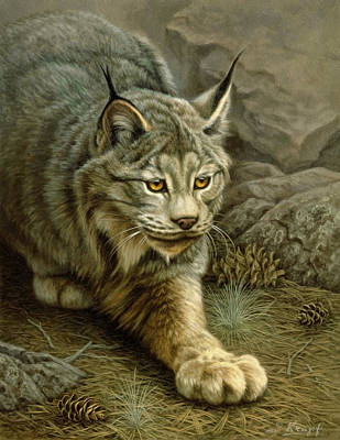 Lynx Painting - Stalking Lynx by Paul Krapf