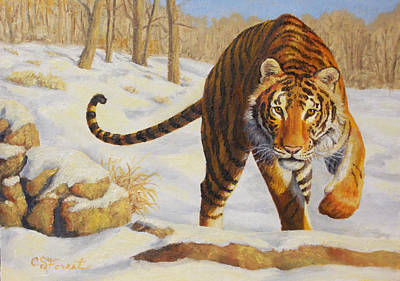 Wild Animals Painting - Stalking Siberian Tiger by Crista Forest