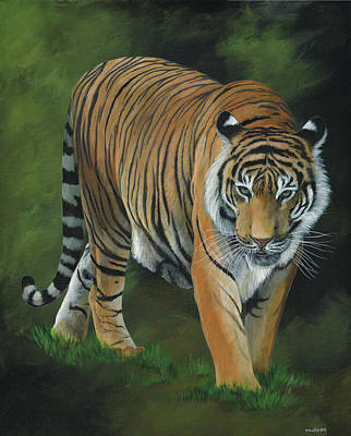 Stalking Tiger Art Print by Heather Bradley