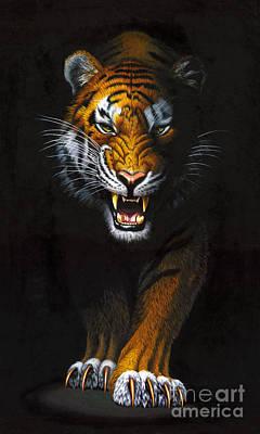 Aggressiveness Photograph - Stalking Tiger by MGL Studio - Chris Hiett