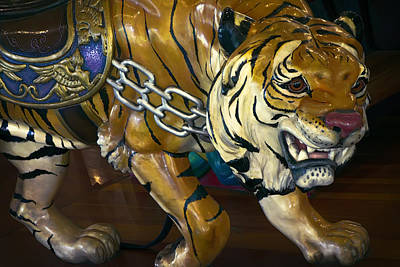 Stalking Tiger Of Looff Carousel  1909 Art Print